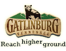 gatlinburg green marketing